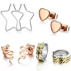 Titanium Staal Earring