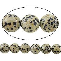 Perles dalmatiens