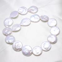Pièce de culture des perles d'eau douce