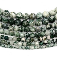 Tree Agate Beads