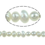 Potato Cultured Freshwater Pearl Beads, natural, white, 3-4mm, Hole:Approx 0.5mm, Sold Per 15 Inch Strand