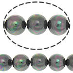 Koraliki z muszli z morza południowego, Muszla mórz południowych, Koło, kolorowany, 10mm, otwór:około 0.5mm, około 38komputery/Strand, sprzedawane na około 15.5 cal Strand