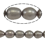 Rice Cultured Freshwater Pearl Beads, natural, grey, Grade A, 5-6mm, Hole:Approx 0.8mm, Sold Per 14.5 Inch Strand