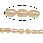 Rice Cultured Freshwater Pearl Beads, natural, pink, Grade A, 5-6mm, Hole:Approx 0.8mm, Sold Per 15 Inch Strand