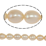 Rice Cultured Freshwater Pearl Beads, natural, pink, Grade A, 6-7mm, Hole:Approx 0.8mm, Sold Per 14.5 Strand