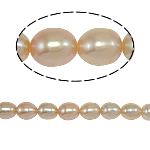 Rice Cultured Freshwater Pearl Beads, Oval, pink, Grade A, 7-8mm, Hole:Approx 0.8mm, Sold Per 15 Inch Strand