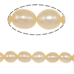 Rice Cultured Freshwater Pearl Beads, natural, pink, Grade A, 6-7mm, Hole:Approx 0.8mm, Sold Per 15 Inch Strand