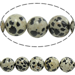 Natural Dalmatian Beads, Round, 6mm, Hole:Approx 0.8mm, Length:Approx 15 Inch, 10Strands/Lot, Approx 60PCs/Strand, Sold By Lot