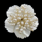Freshwater Pearl Brooch, with Shell, Flower, white, 57x13mm, Sold By PC