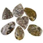 Wisiorki z agatem, Agat w kolorze naturalnym, mieszane, 42-54mm, otwór:około 2-2.5mm, 20komputery/torba, sprzedane przez torba