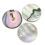 Natural Abalone Shell Pendants, Coin, 13x13x2mm, Hole:Approx 1mm, 50PCs/Lot, Sold By Lot