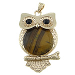 Tiger Eye Pendants, with brass, Owl, gold color plated, with rhinestone, 40x63x7mm, Hole:Approx 4x7mm, 10PCs/Lot, Sold by Lot