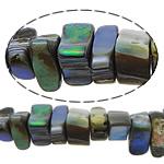 Koraliki Abalone, Muszla Abalone, Bryłki, bez zawartości niklu, ołowiu i kadmu, 4-5x7-14x6-10mm, otwór:około 1.5mm, długość:16 cal, 5nici/wiele, sprzedane przez wiele