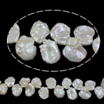 Reborn Cultured Freshwater Pearl Beads, Keishi, natural, white, 15-25mm, Hole:Approx 0.8mm, Sold Per 15.7 Inch Strand