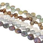 Coin Cultured Freshwater Pearl Beads, mixed colors, 12-16mm, Hole:Approx 0.8mm, Length:Approx 15.7 Inch, Sold By KG