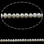 Button Cultured Freshwater Pearl Beads, Potato, natural, white, Grade AAA, 5-6mm, Hole:Approx 0.8mm, Sold Per 15.5 Inch Strand