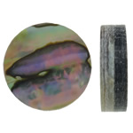 Shell Cabochons, Abalone Shell, Coin, flat back, 12x3mm, Sold By PC