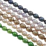 Ryżowe koraliki z pereł hodowlanych słodkowodnych, Perła naturalna słodkowodna, Naturalne, mieszane kolory, gatunek, 5-8mm, otwór:około 0.8mm, długość:15 cal, 10nici/torba, sprzedane przez torba