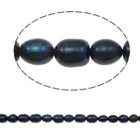Rice Cultured Freshwater Pearl Beads, natural, black, Grade A, 6-7mm, Hole:Approx 0.8mm, Sold Per 14 Inch Strand
