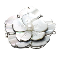 Shell Box Clasp, Brass, with pearl & Black Shell, Flower, platinum color plated, 3-strand, nickel, lead & cadmium free, 48x47x12mm, Hole:Approx 2mm, 10PCs/Bag, Sold By Bag