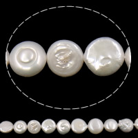 Coin Cultured Freshwater Pearl Beads, Grade AA, 10-11mm, Hole:Approx 0.8mm, Sold Per 15 Inch Strand