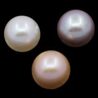 Koraliki z pereł hodowlanych słodkowodnych bez otworu, Perła naturalna słodkowodna, Koło, Naturalne, dostępnych więcej kolorów, klasy AAA, 10-11mm, sprzedane przez PC