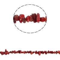 Koraliki z naturalnego koralu, Koral naturalny, Bryłki, czerwony, 5-8mm, otwór:około 0.8mm, około 260komputery/Strand, sprzedawane na około 33.8 cal Strand