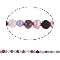 Barok Gekweekte Zoetwater Parel kralen, gemengde kleuren, 5-6mm, Gat:Ca 0.8mm, Per verkocht 15 inch Strand