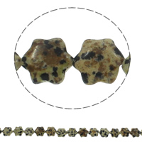 Natural Dalmatian Beads, Flower, 13x15x5mm, Hole:Approx 1.5mm, Approx 28PCs/Strand, Sold Per Approx 15.7 Inch Strand