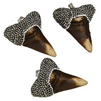 Bone wół Wisiorek, ze Glina & Mosiądz, Ząb, Platerowane w kolorze platyny, naturalny, 41-44x52-54x16-17mm, otwór:około 5x10mm, 10komputery/wiele, sprzedane przez wiele