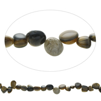 Gemstone Chips, Tiger Eye, Nuggets, natural, 7x9x5mm-11x23x8mm, Hole:Approx 1mm, Approx 47PCs/Strand, Sold Per Approx 15.5 Inch Strand