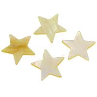 Желтая ракушка кабошон, Звезда, натуральный, плоской задней панелью, 23x2mm, продается PC
