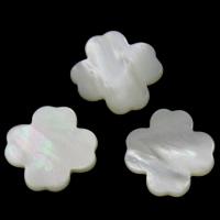 Белая ракушка кабошон, Форма цветка, натуральный, плоской задней панелью, 18x2mm, продается PC