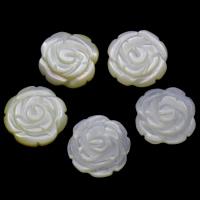 Белая ракушка кабошон, Форма цветка, натуральный, плоской задней панелью, 11x2.5mm, продается PC