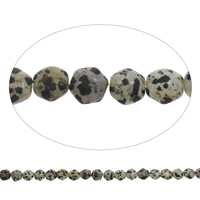 Natural Dalmatian Beads, Hexagon, 11x10x5mm, Hole:Approx 1mm, Approx 38PCs/Strand, Sold Per Approx 15 Inch Strand