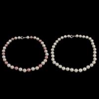 Ожерелье из ракушки Южного моря, южноморская ракушка, латунь раскладывающейся застежкой, Круглая, Много цветов для выбора, 12mm, Продан через Приблизительно 18 дюймовый Strand