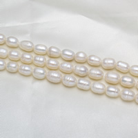 Rice Cultured Freshwater Pearl Beads, natural, white, Grade A, 8-9mm, Hole:Approx 0.8mm, Sold Per 15 Inch Strand