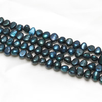 Keishi Cultured Freshwater Pearl Beads, blue, 8-9mm, Hole:Approx 1mm, Sold Per Approx 15.5 Inch Strand