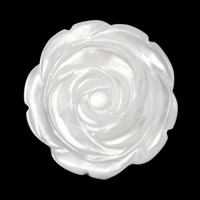 Белая ракушка кабошон, Форма цветка, натуральный, гравированный, 20x3mm, 20ПК/Лот, продается Лот