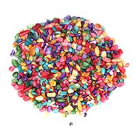Кабошоны из ракушек, Ракушка, Комкообразная форма, 5-10x4-8x2-6mm, продается KG
