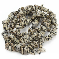 Natural Dalmatian Beads, Nuggets, 8-12mm, Hole:Approx 1.5mm, Approx 76PCs/Strand, Sold Per Approx 31 Inch Strand
