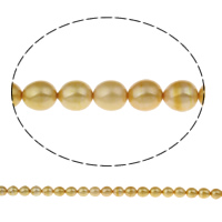 Clearance Freshwater Pearl Beads, Rice, yellow, 8-9mm, Hole:Approx 0.8mm, Sold Per Approx 14 Inch Strand