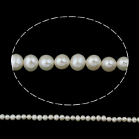 Clearance Freshwater Pearl Beads, Potato, natural, white, Grade AA, 5-6mm, Hole:Approx 0.8mm, Sold Per Approx 14.5 Inch Strand